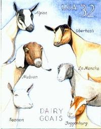 dairy goat breeds - Parfu kaptanband co